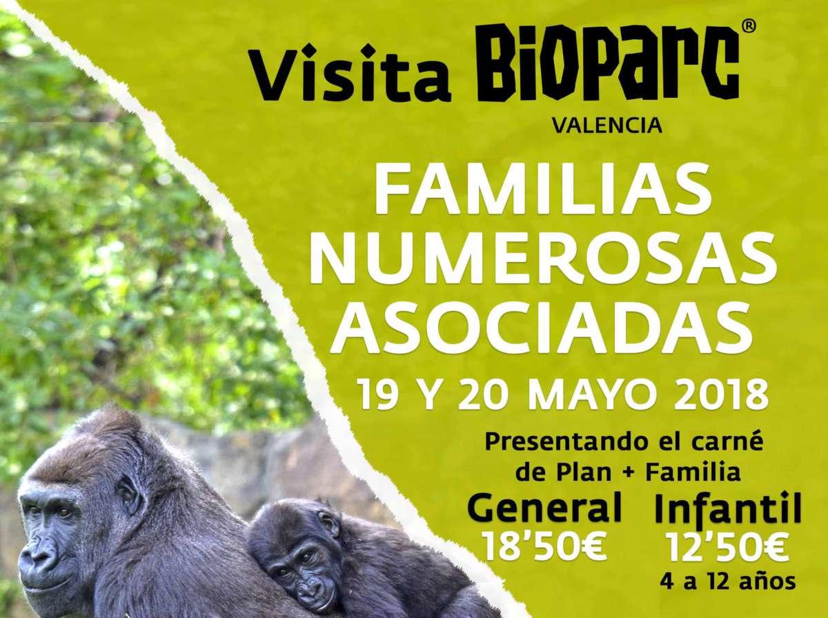 ¡Celebra el día de la familia en Bioparc a precios increíbles!